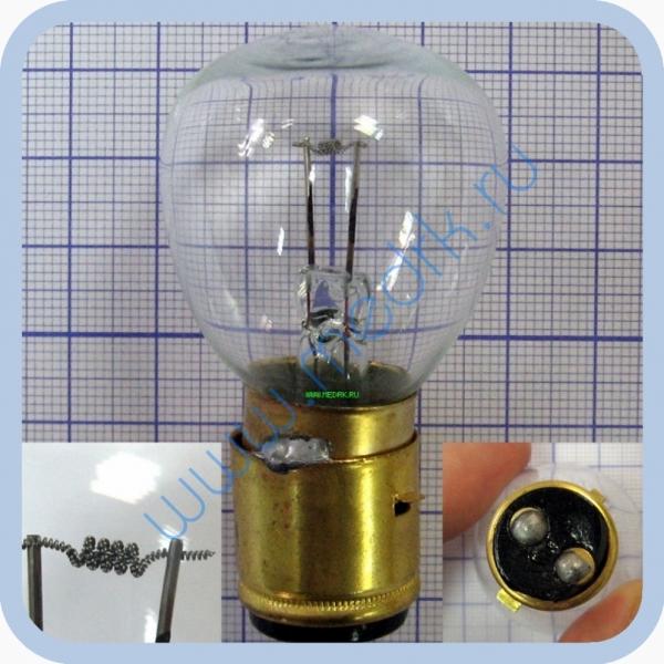 Лампа накаливания РН 12-50 P20d/21  Вид 1