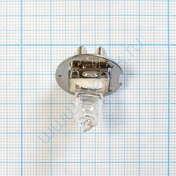 Лампа галогенная (галогеновая) Osram 64260 12V 30W PG22  Вид 6