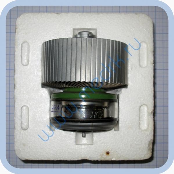 Радиолампа ГУ-43Б (генераторный тетрод)  Вид 1