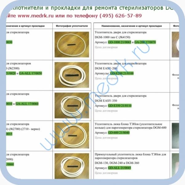 Уплотнители и прокладки для ремонта стерилизаторов DGM (КНР)  Вид 1