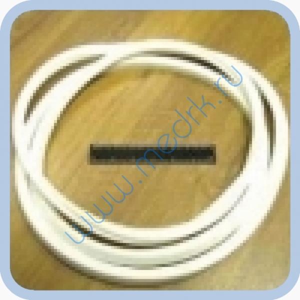 Уплотнители и прокладки для ремонта стерилизаторов DGM (КНР)  Вид 4