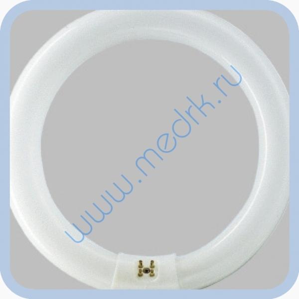 Лампа люминесцентная Philips TL-E Circular 32W/33-640 1CT  Вид 1