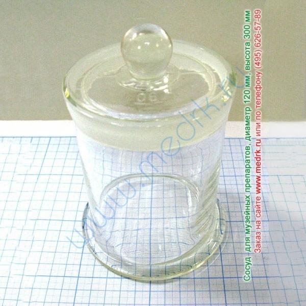 Сосуд для музейных препаратов Ø120мм h-300мм  Вид 1