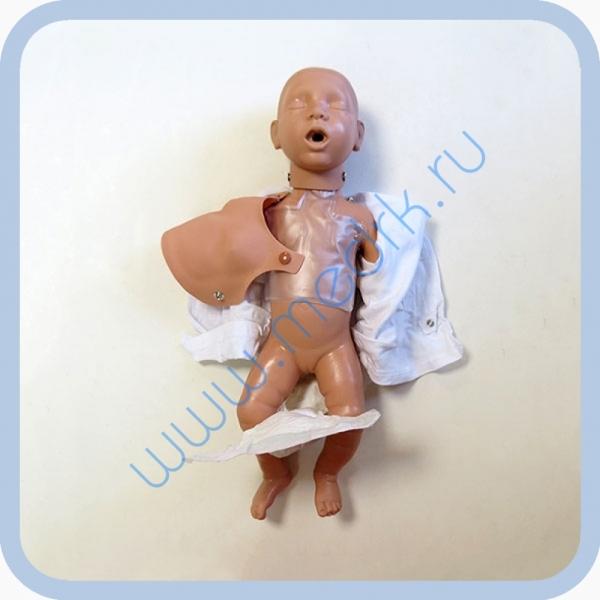 Манекен новорожденного W44541 для обучения реанимации  Вид 3