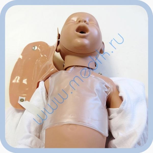 Манекен новорожденного W44541 для обучения реанимации  Вид 4