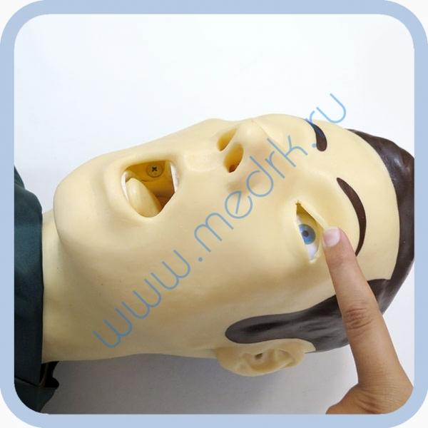 Тренажер сердечно-легочной и мозговой реанимации Максим-2  Вид 2