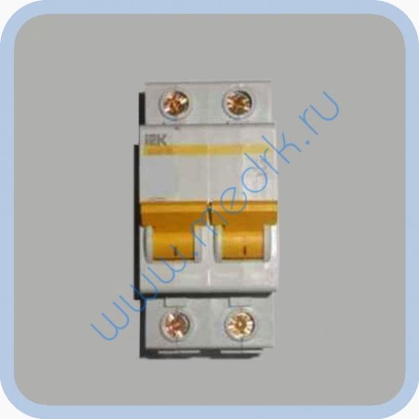 Выключатель автоматический ИЭК ВА 47-29 25А 2Р для ДЭ-4  Вид 1