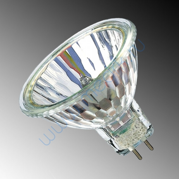 Лампа Philips 14598 Accentline 12V 35W 36 град. GU5.3