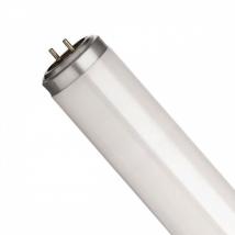 Лампа люминесцентная T8 Osram L 18 W/77 FLUORA G13
