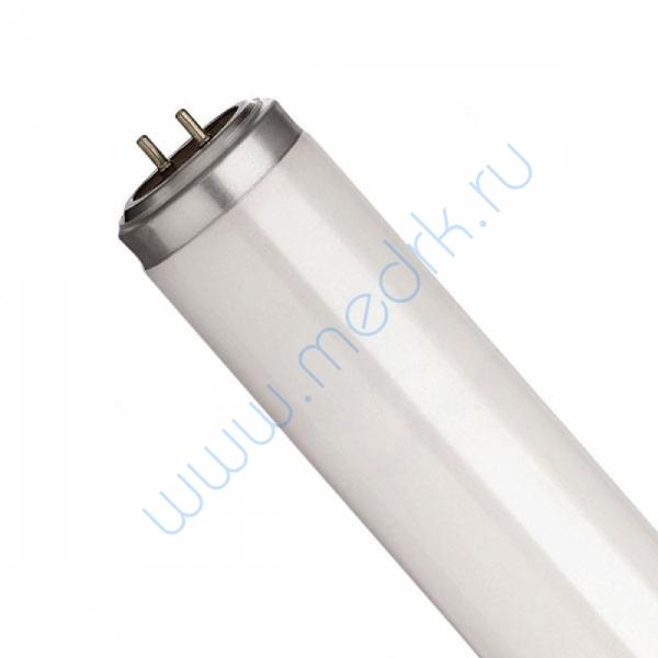 Лампа ЛС 40 (G13)