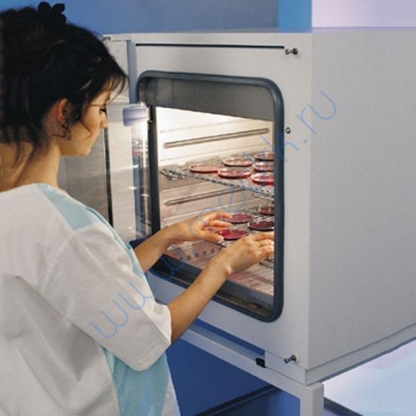 Инкубатор лабораторный INCUCELL 55 Komfort  Вид 2
