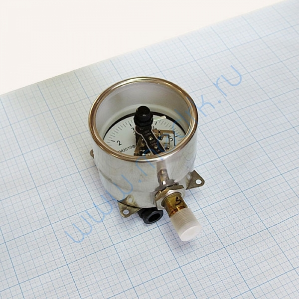 Манометр сигнализирующий ДМ2010ф СгуЗ (0-6) кгс/см2  Вид 2