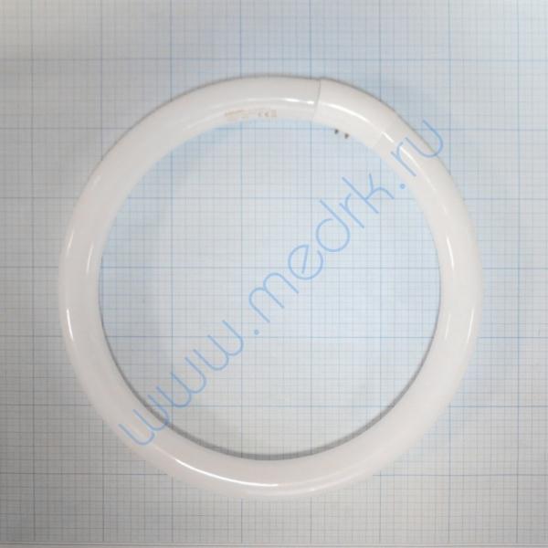 Лампа кольцевая люминесцентная L32W/840C G10Q OSRAM  Вид 4