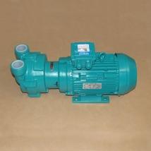 Насос вакуумный GD-600 15/0011