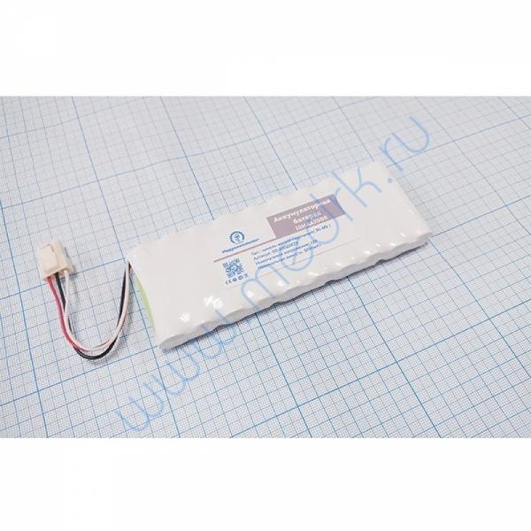 Батарея аккумуляторная 10HAA2000 для Kenz Cardico 601 (МРК)  Вид 1